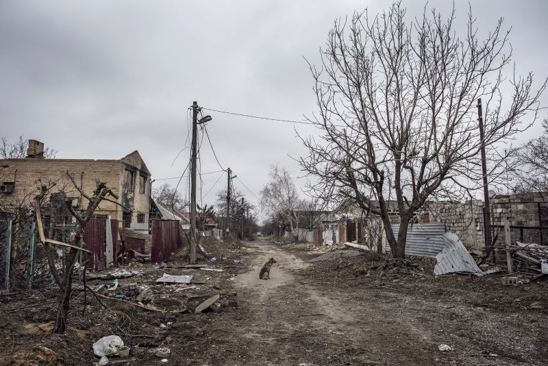 Spartak, Life and War Among Rubbles and Bunkers by Giorgio Bianchi
